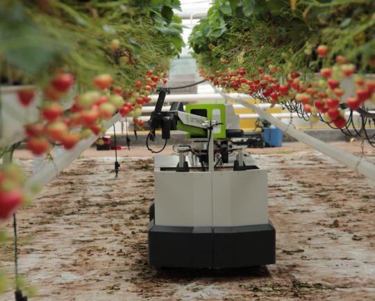 【Octinion】ベルギー発、IoTや3Dセンサ技術を駆使した小型農業用ロボットメーカー