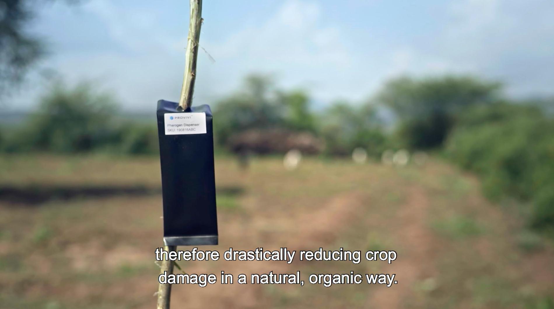 人工合成フェロモンによってオスの害虫を混乱させ繁殖を抑えるProvivi社の技術を解説