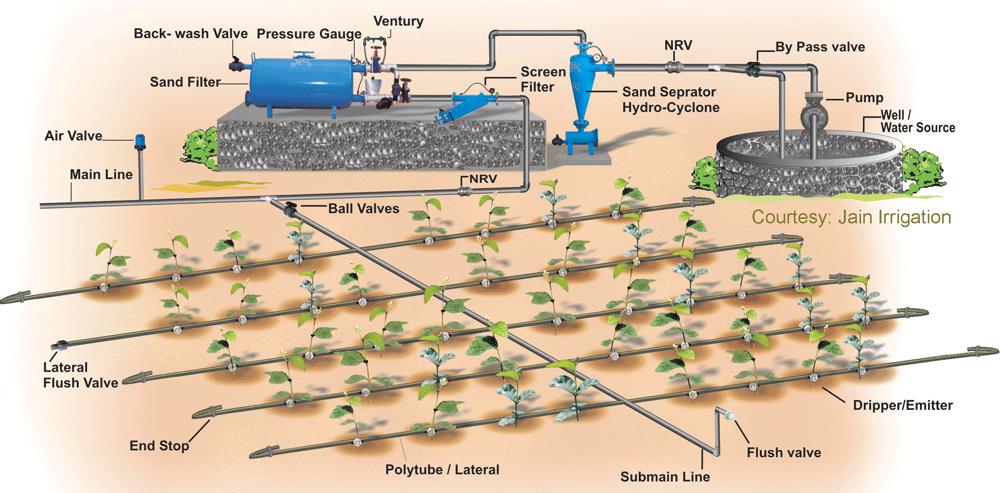 点滴灌漑の概要図