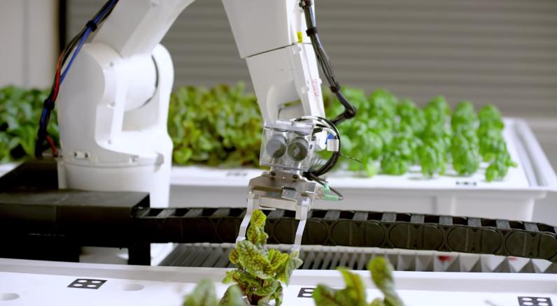 ロボットアームが行き交う近未来の圃場。Iron Ox の自動水耕栽培技術を紹介します。