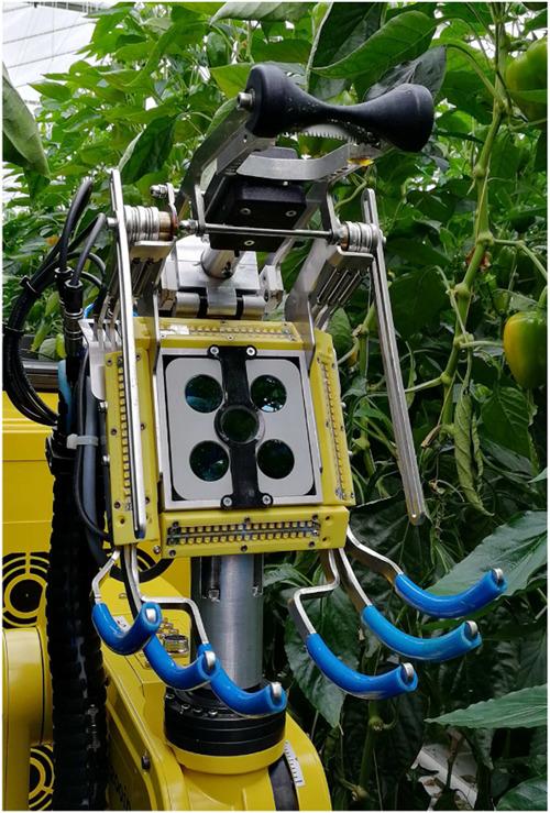 独自のエンドエフェクタを使ったカラーピーマンの自動収穫ロボットの研究