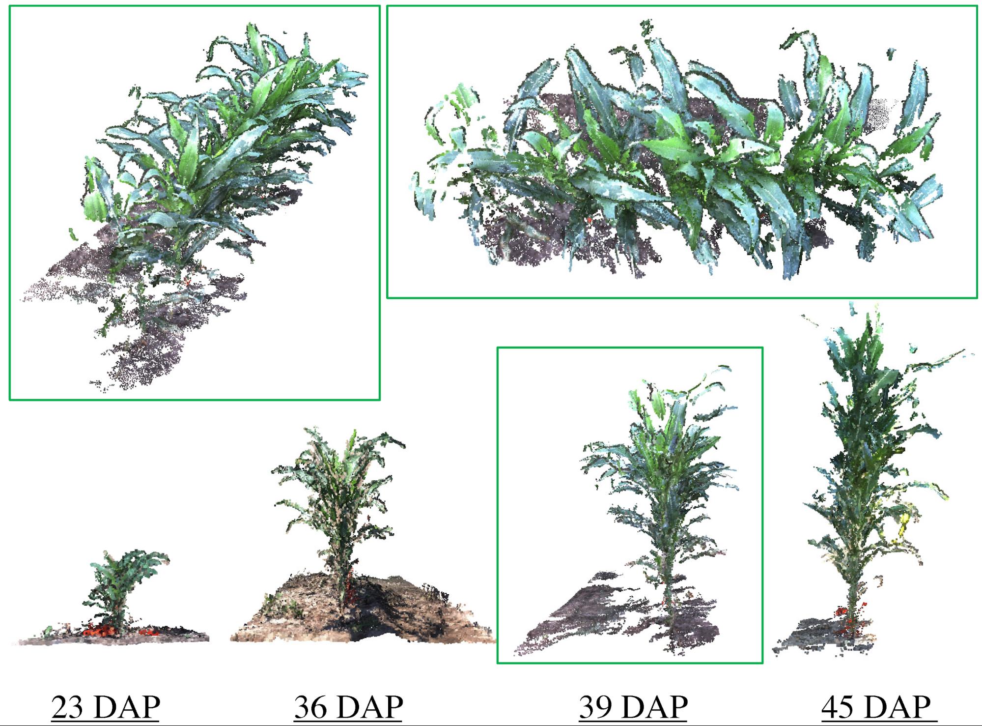 地上移動型車両と移動式観測塔による植物生育管理