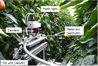 可動式カメラによる、自動収穫のためのカラーピーマンの認識