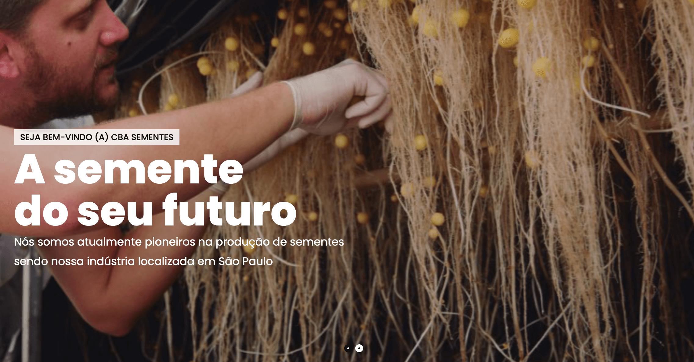 空中でジャガイモが育つ栽培技術「エアロポニック」とは。病原体フリーの種イモを農家に届ける企業、CBA sementes を紹介します