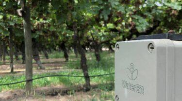 ワイン葡萄やアーモンド向けの自動灌漑ソリューションを開発するWaterBit社について解説
