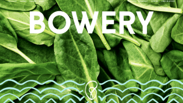 都市近郊でスマート屋内農場を展開する、米国最大の垂直農業テクノロジー企業Bowery Farming社について解説