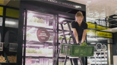 屋内垂直農法で都市部での野菜栽培を手掛けるInfarm社について解説