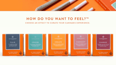 州法に準拠した高級大麻製品を栽培・販売するCanndescent社について解説