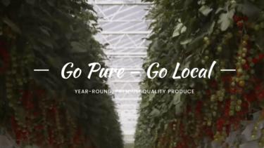 アラブ湾岸地域の厳しい気候の中で、世界最先端の環境制御型農業技術を用いて生鮮食品を生産するPure Harvest Smart Farms社について解説