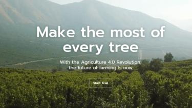 樹木の健康状態や生産性を管理・最適化するためのエンド・ツー・エンドサービスを提するSeeTree社について解説